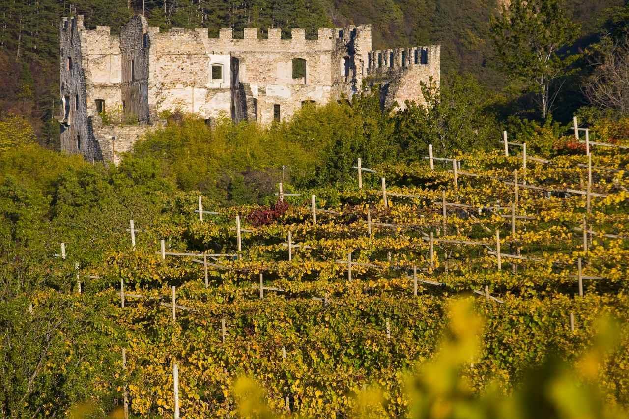 Rovine del Castel Caldiff