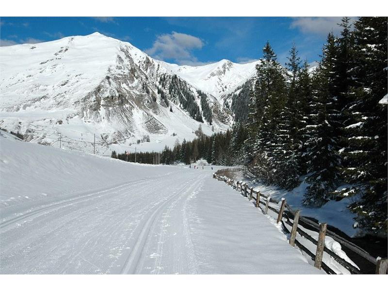 Langlaufen im Pensertal, Sarntal, Südtirol