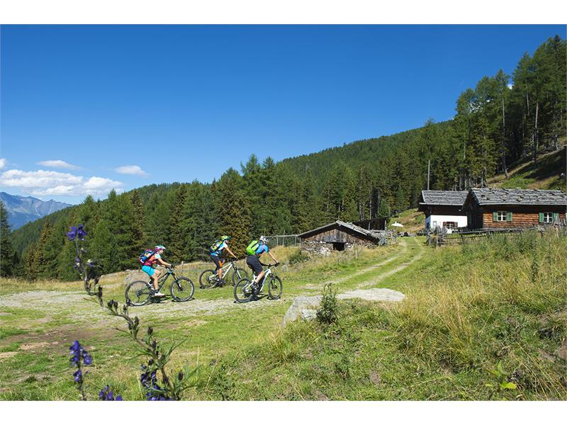 Uphill Tablander Alm - Naturns