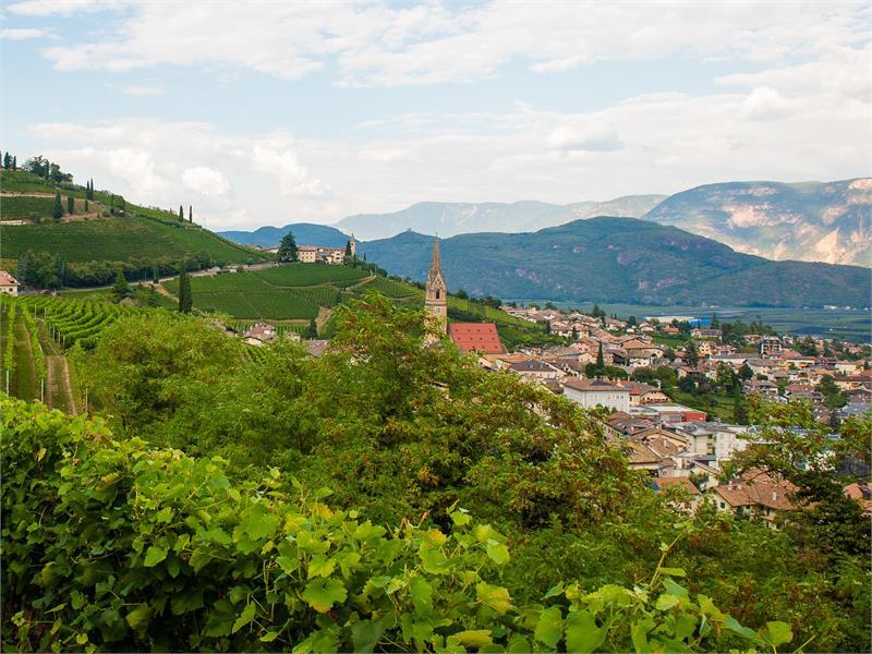 Gewürztraminer Weinwanderweg