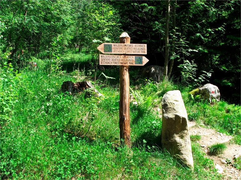 Walderlebnispfad Aschbach