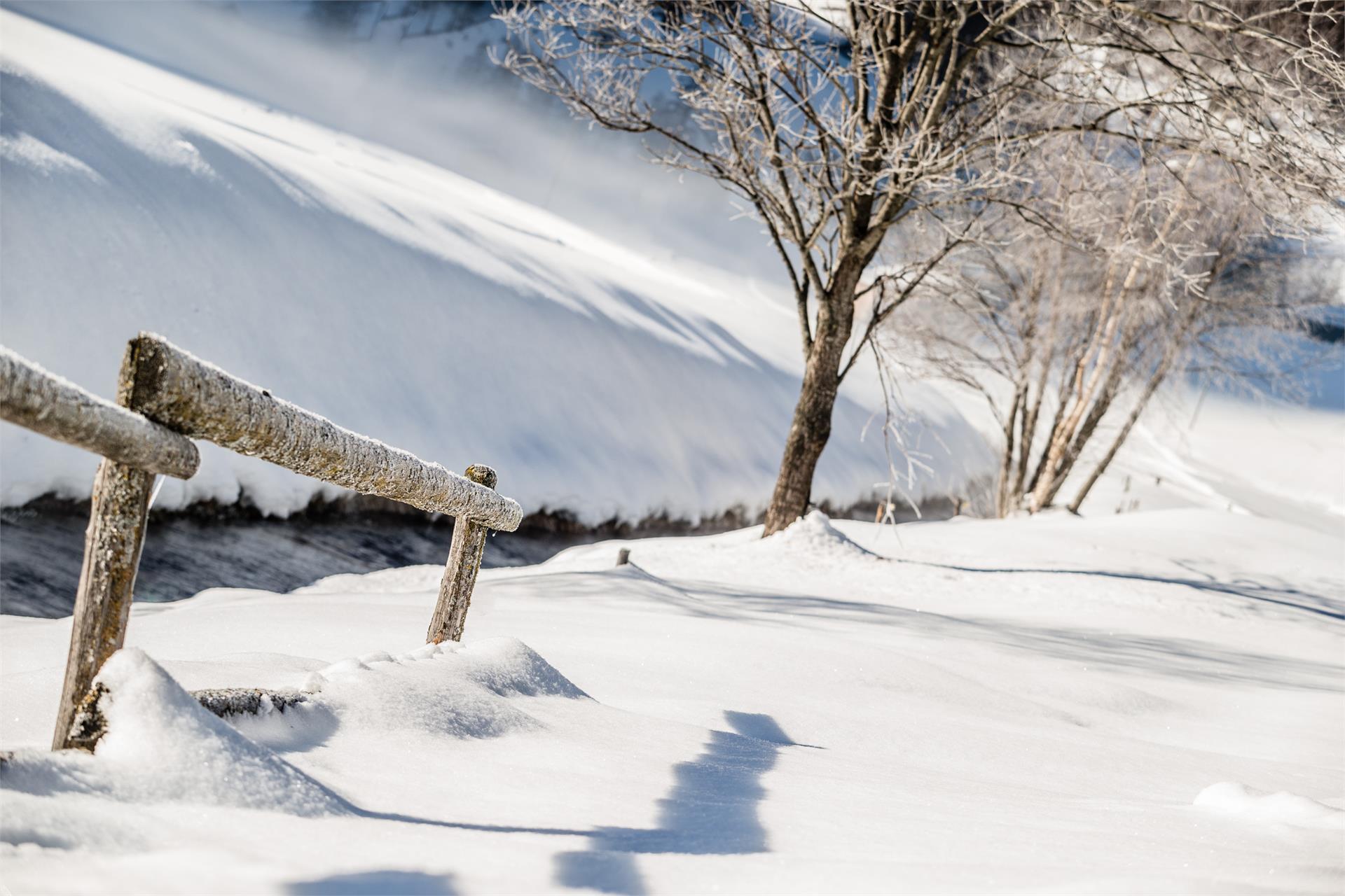 Winter hiking trail to Sasso/Stein