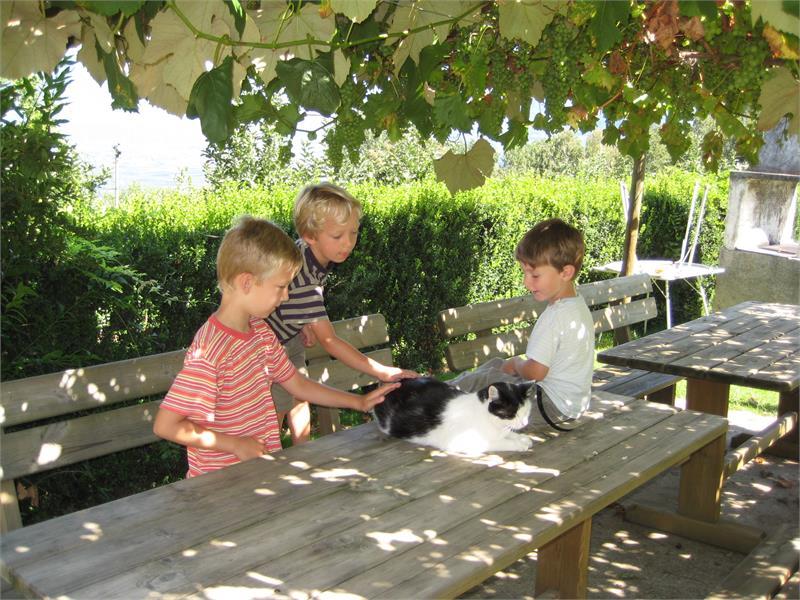 Alexander mit Freunden
