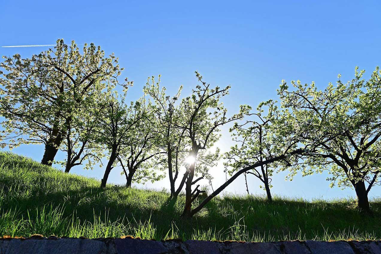Einzigartige Landschaft