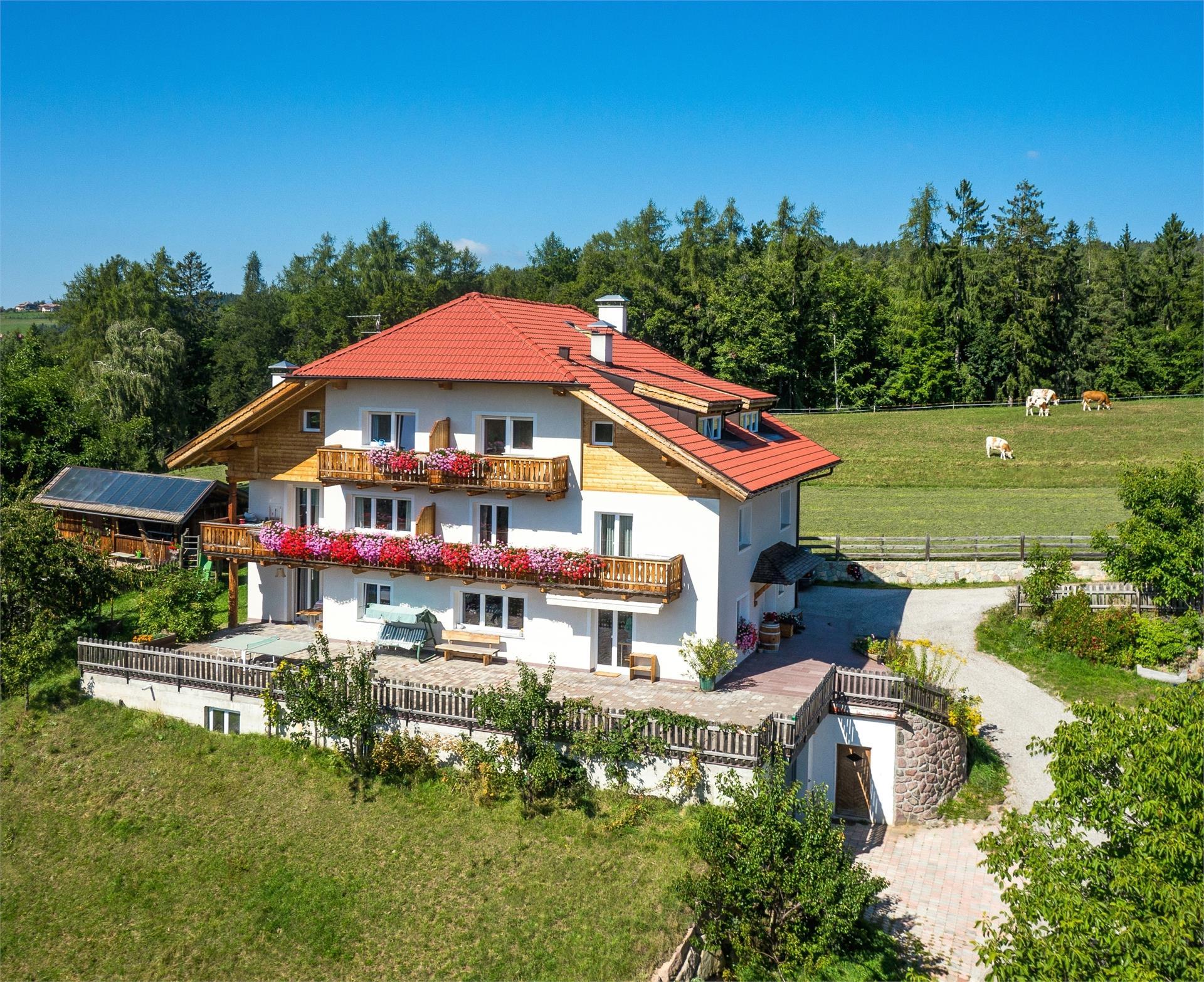 farm holiday in South Tyrol Bolzano Untertrotnerhof