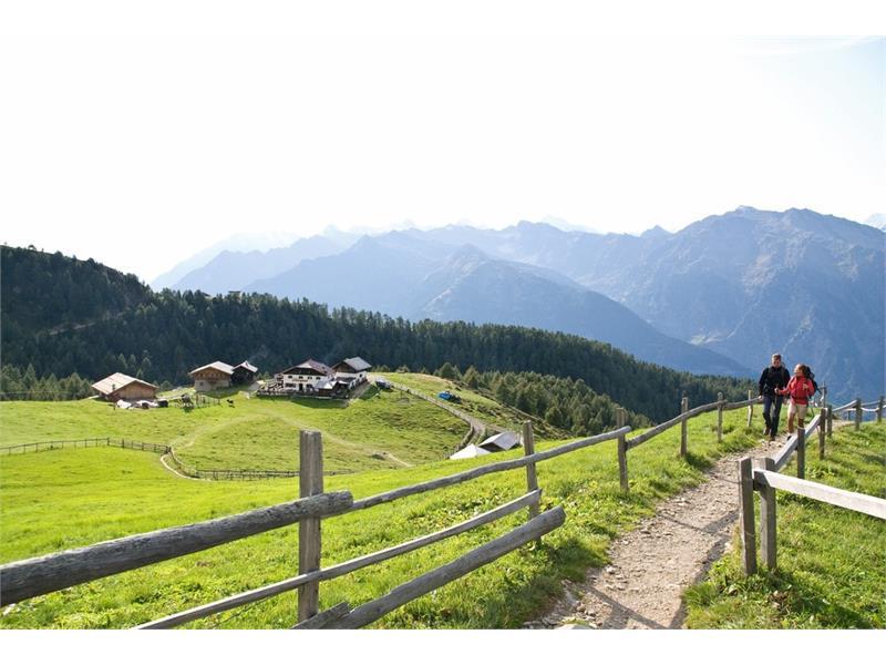 Hirzerhütte-Malga-Alm-Grube
