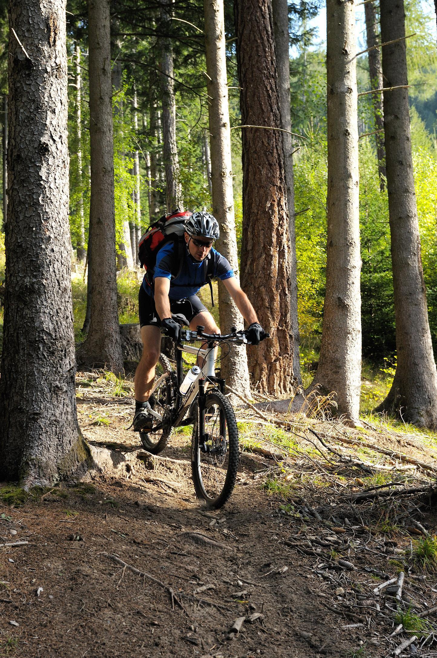 Mohlboch-Trail