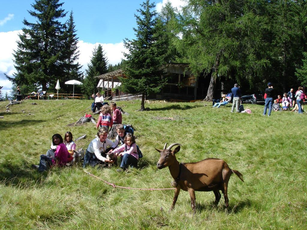 Sommer-Rundwanderung: Lachwiesenhütte