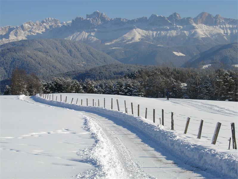 Winterpanorama Deutschnofen