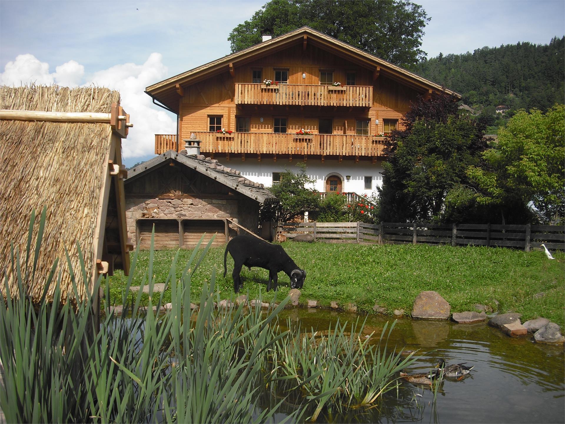 Salonetto - maso Bacherhof - St. Ulrich