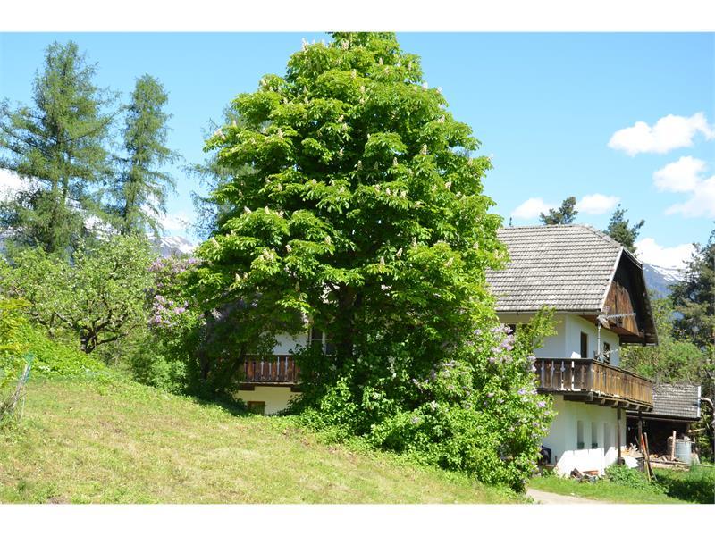 Bauernhof am Kienberg