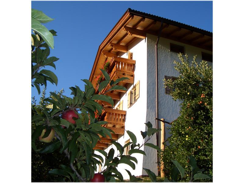 apartment - Lafreiderhof