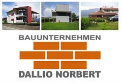 Dallio Norbert