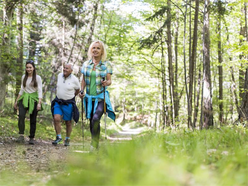 Camminata per i boschi