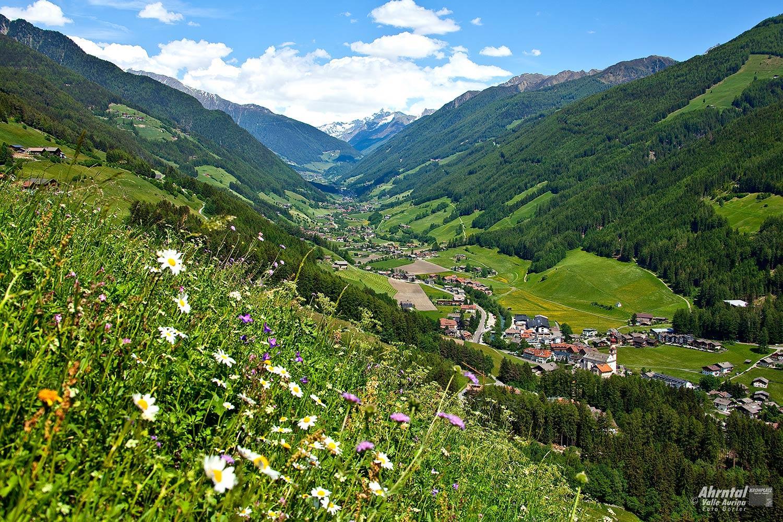 Escursione - Quiete alpina